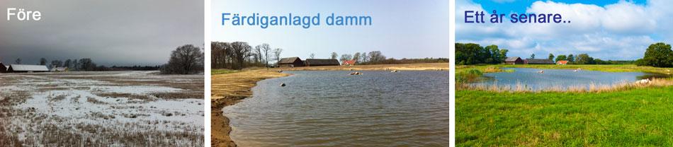 våtmarksserie3bild