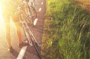 Cykla i Skåne