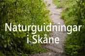 Naturguidningar i Skåne